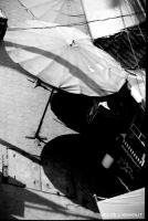 13_parasol.jpg